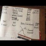 Walking group English lesson